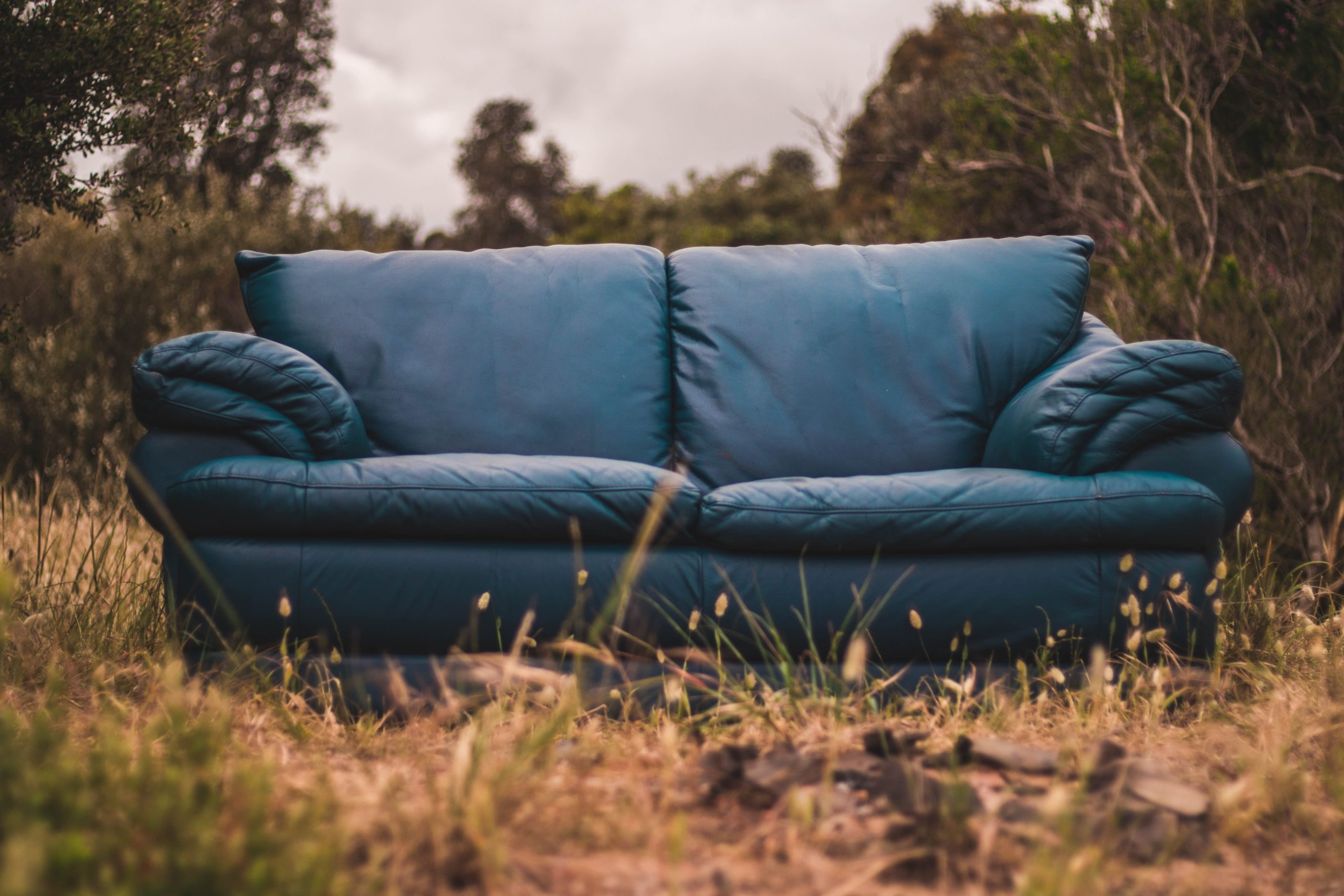 The conscious couch